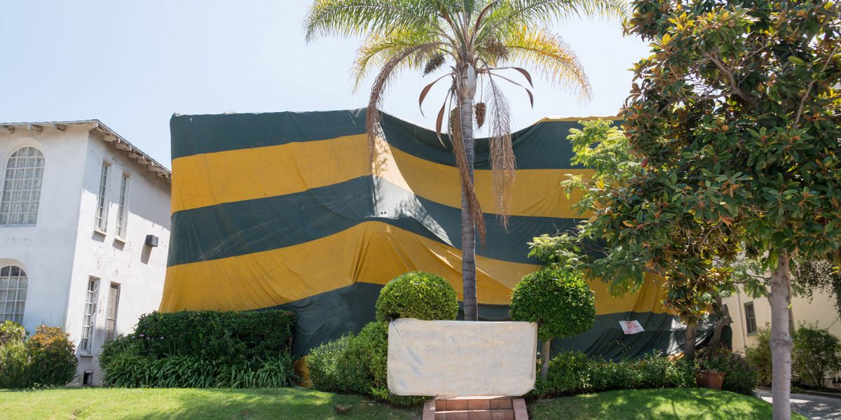 Fumigation Services - Pest Control Solutions & Services - Tampa Bay, FL